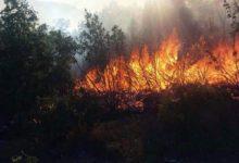 Požari na sjevernom Velebitu još nisu lokalizirani