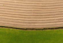 Otvoren natječaj za sektor biljne proizvodnje