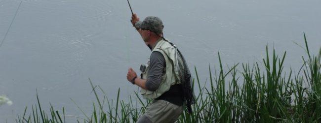 Košnja vodene rese – obavijest