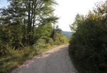Ulaganje u šumsku infrastrukturu – Podmjera 4.3.