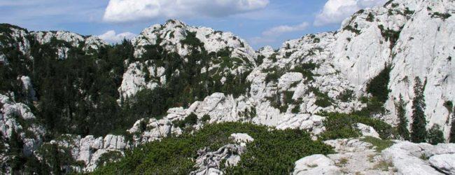 Prigodni program povodom Međunarodnog dana planina u JUNP Sjeverni Velebit