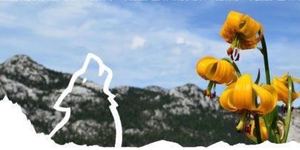 Park prirode Velebit najavljuje početak sezone