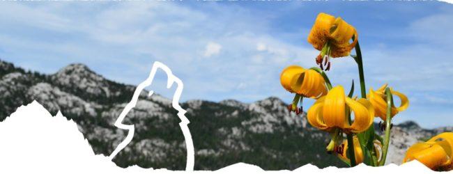 Početak turističke sezone 2020. i novosti u turističkoj ponudi parka prirode Velebit