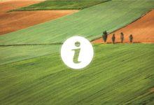 Započela isplata predujma poljoprivrednicima za 2020., osigurano više od 1,5 milijarde kuna
