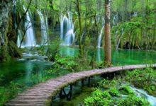 Povoljnija dvodnevna ulaznica u NP Plitvička jezera