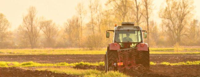 Nove izmjene natječaja za ulaganja u preradu, marketing i/ili razvoj poljoprivrednih proizvoda