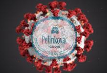 U Hrvatskoj otkriven mutirani COVID-19 virus. Napada samo alkoholičare, vjernici imaju imunitet!
