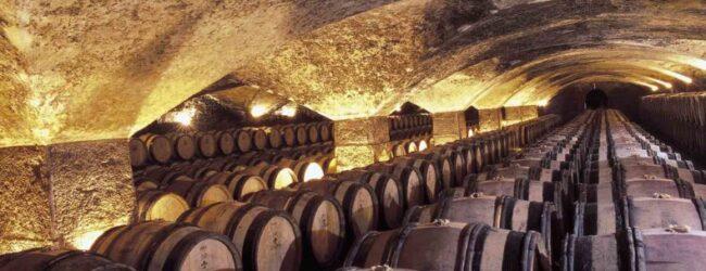 Uskoro natječaj za mjeru Ulaganja u vinarije i marketing vina