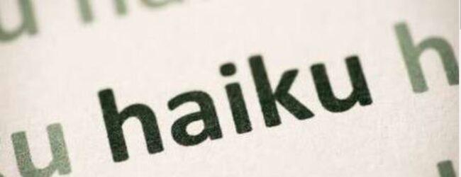 """Natječaj – Školski sport i olimpijski pokret pod nazivom """"Haiku"""""""